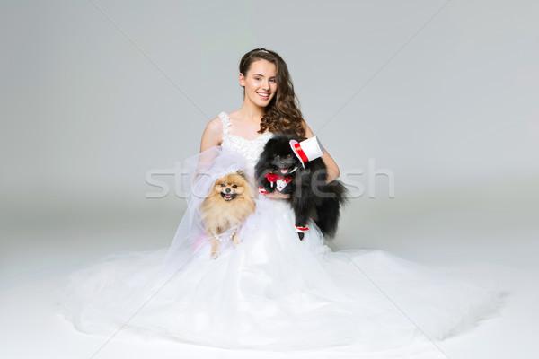 Foto stock: Noiva · menina · cão · casamento · casal · belo