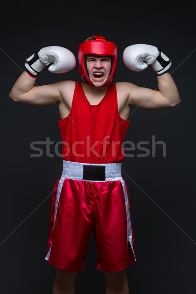 Young boxer winner Stock photo © svetography