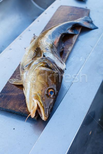 Big nowegian fish on cutting board Stock photo © svetography