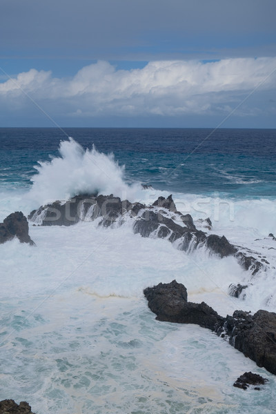 Naturale nuoto tenerife isola Ocean stormy Foto d'archivio © svetography