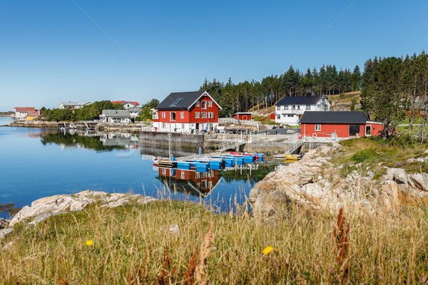 view on norwegian fjord with houses along coastline Stock photo © svetography