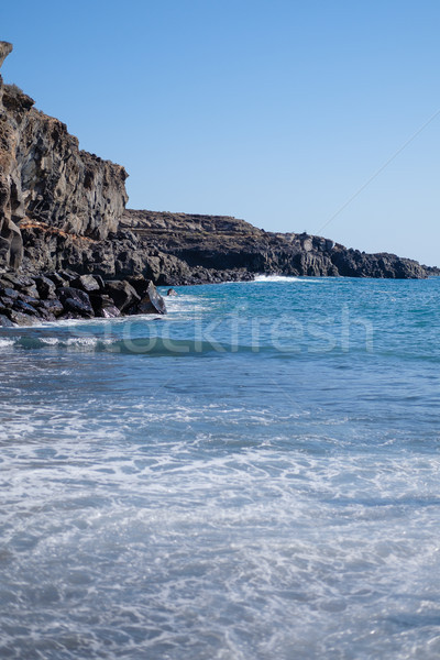 beautiful wild beach with black sand Stock photo © svetography