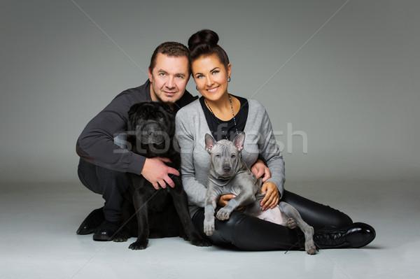 Stok fotoğraf: çift · iki · köpekler · güzel · orta · yaşlı · Taylandlı