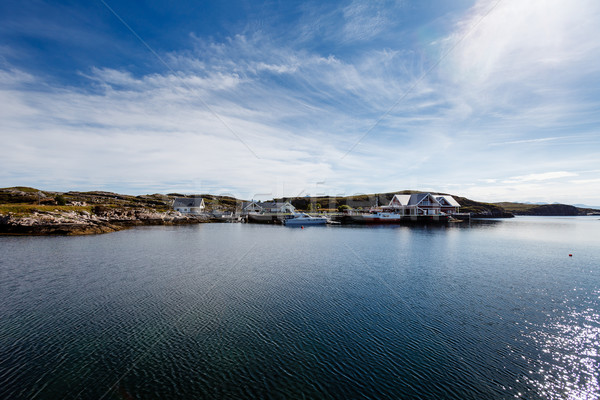 Beautiful view on nowegian fjords and seaside houses Stock photo © svetography