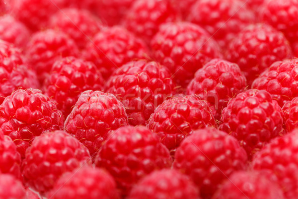 many raspberry berries isolated on white Stock photo © svetography