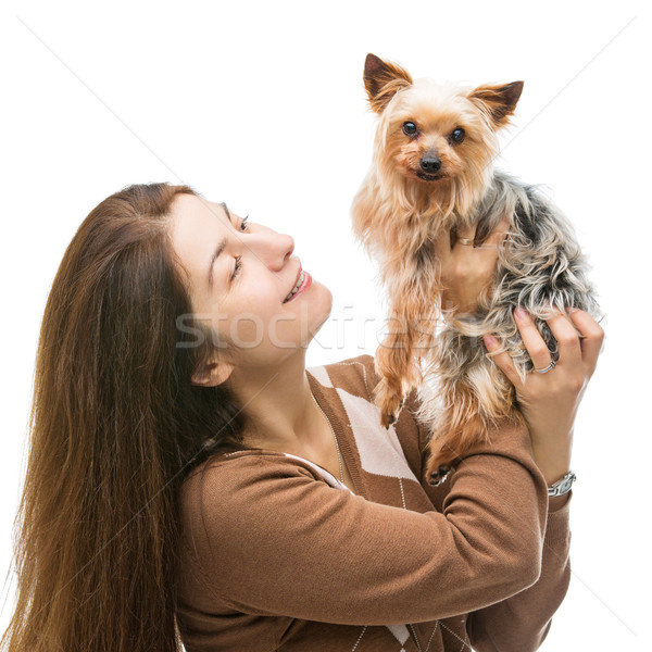 Woman holding yorkie Stock photo © svetography