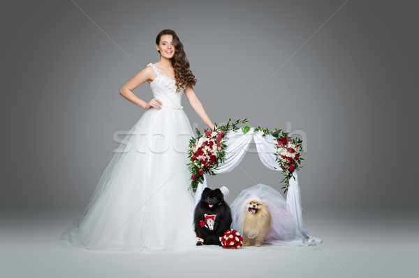 bride girl with dog wedding couple under flower arch Stock photo © svetography