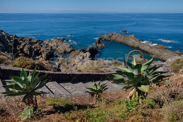 Natuurlijke zwemmen tenerife eiland oceaan outdoor Stockfoto © svetography