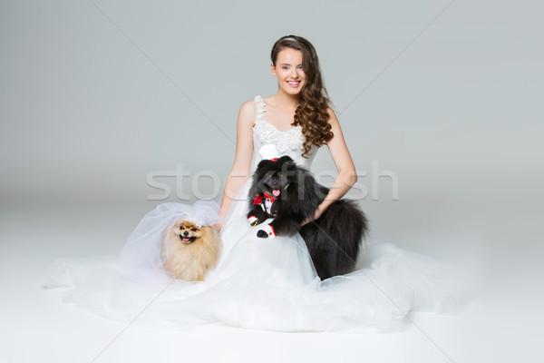 bride girl with Spitz dog wedding couple Stock photo © svetography