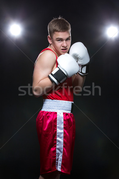 Young boxer in red form Stock photo © svetography