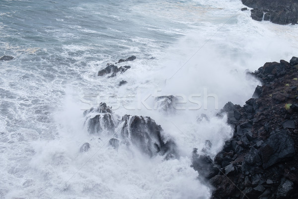 natural swimming pools on Tenerife island Stock photo © svetography