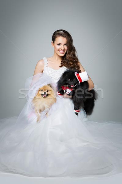Noiva menina cão casamento casal belo Foto stock © svetography