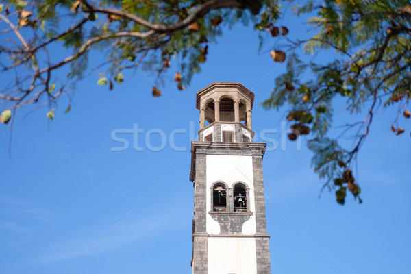 bell tower on santa cruz de tenerife Stock photo © svetography