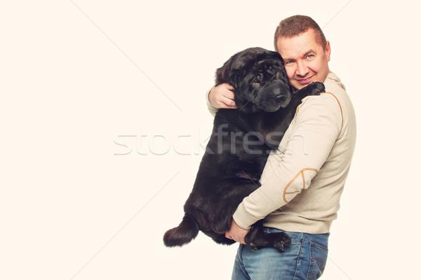 Adam sharpei köpek siyah yetişkin Stok fotoğraf © svetography