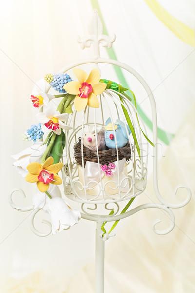 Stock foto: Dekorativ · Käfig · Vögel · erschossen · zwei