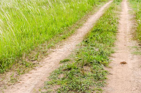 道路 土壌 草 草原 表示 ストックフォト © sweetcrisis
