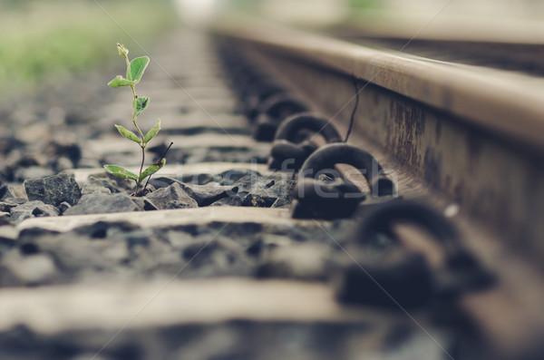 鉄道 工場 日 タイ 列車 ストックフォト © sweetcrisis
