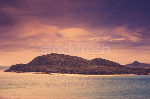 Zöld sziget tenger természet tájkép klasszikus Stock fotó © sweetcrisis