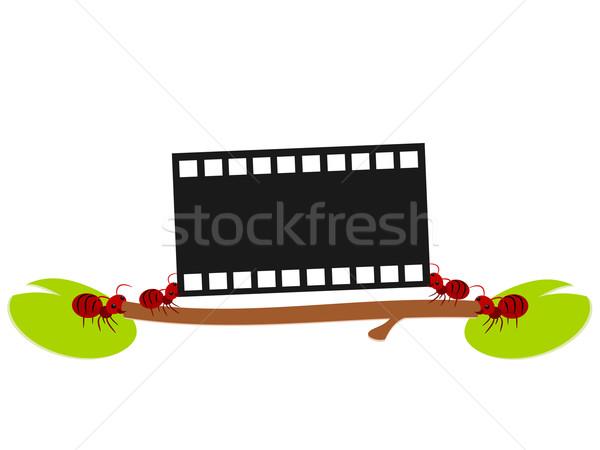 Vermelho formigas filme trabalhar ilustração trabalho em equipe Foto stock © sweetcrisis