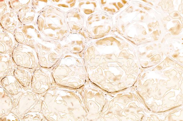 pain white water bubble Stock photo © sweetcrisis