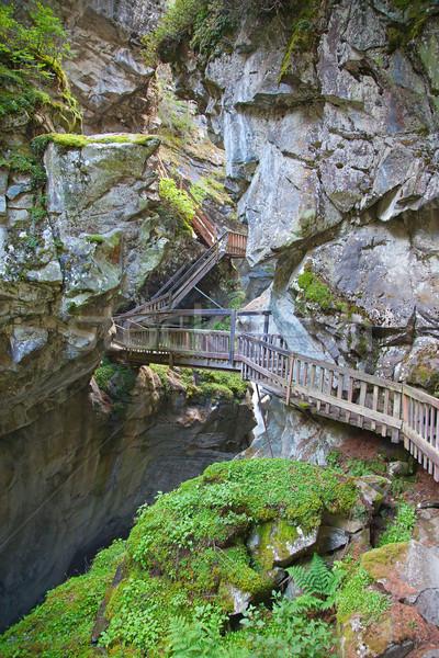 Stok fotoğraf: Ahşap · köprü · çim · orman · doğa · dağ