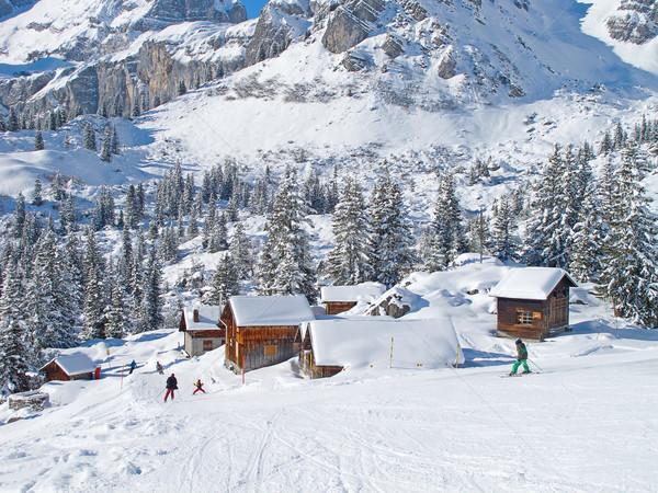 Skiën helling resort iep Zwitserland sport Stockfoto © swisshippo