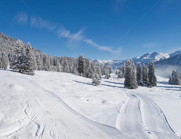 Stok fotoğraf: Kayakçılık · başvurmak · spor · dağ · Kayak