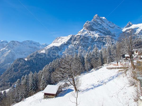 Kış alpler İsviçre gökyüzü ev ağaç Stok fotoğraf © swisshippo