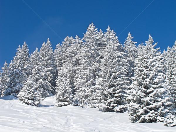 Kış alpler bulutlar doğa kar toprak Stok fotoğraf © swisshippo