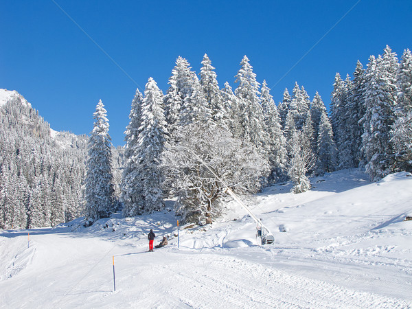 スキー スロープ リゾート ニレ スイス スポーツ ストックフォト © swisshippo