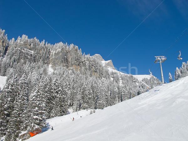 Kayakçılık başvurmak karaağaç İsviçre spor Stok fotoğraf © swisshippo