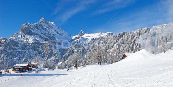 Winter in alps Stock photo © swisshippo