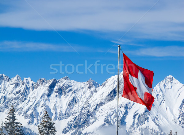 Swiss flag Stock photo © swisshippo