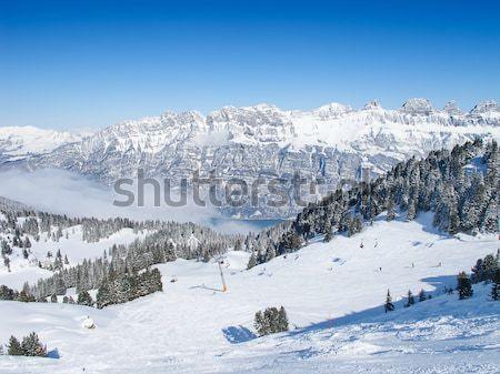 Winter in the alps Stock photo © swisshippo