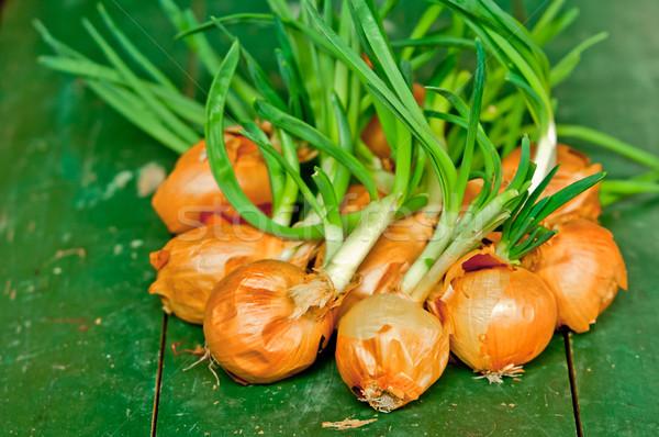 Soğan yeşil tablo gıda Stok fotoğraf © szabiphotography