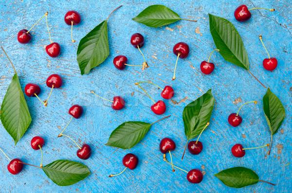 Wiśniowe wiśni pozostawia jasnoniebieski górę Zdjęcia stock © szabiphotography