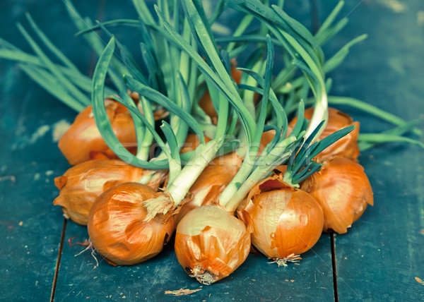 Bunch of onions on green table Stock photo © szabiphotography