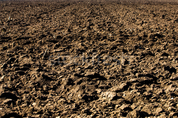 Ploughed soil in agricultural field arable land Stock photo © szabiphotography