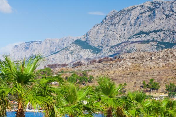 Adriatic coastal region in Dalmatia, Croatia with white, rocky m Stock photo © szabiphotography