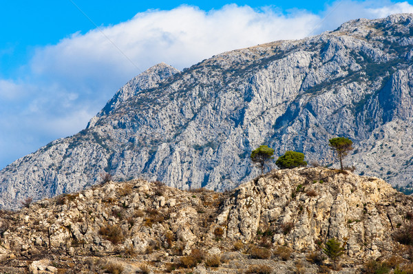 Adriatic coastal region in Dalmatia, Croatia with white, rocky m Stock photo © szabiphotography