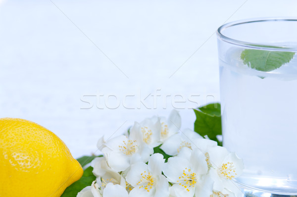 Lemonade with fresh lemon and mint leaves with copy space Stock photo © szabiphotography