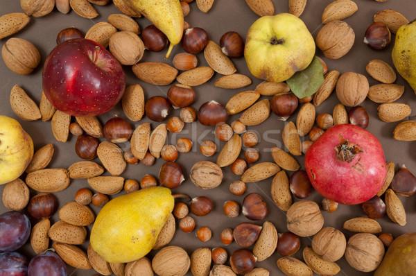 Orgânico outono frutas concha nozes marrom Foto stock © szabiphotography