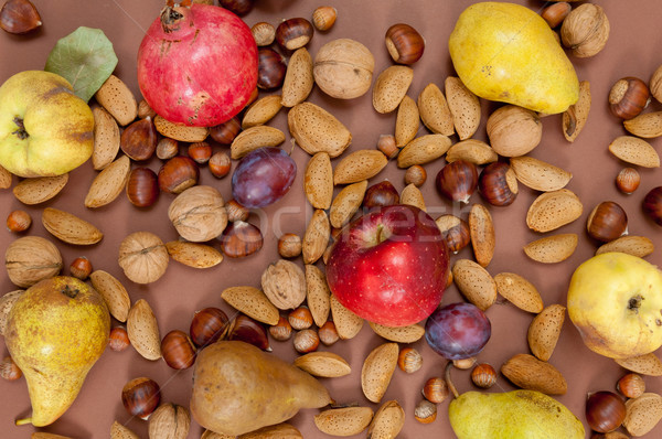 Organik sonbahar meyve kabuk fındık kahverengi Stok fotoğraf © szabiphotography