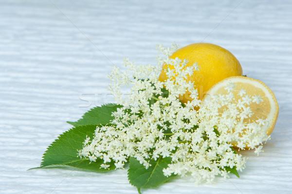 flowers elderberry Sambucus nigra and elderberry flower and lemon Stock photo © szabiphotography