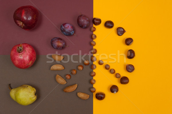 Peace symbol of nuts and autumn fruits on split background Stock photo © szabiphotography