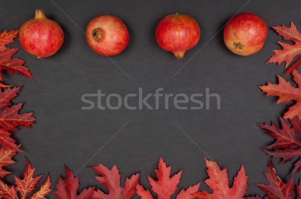 Rząd ramki pozostawia szary jesienią czerwony Zdjęcia stock © szabiphotography