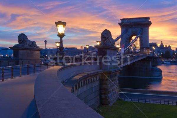 Rano widoku łańcucha most Budapeszt miasta Zdjęcia stock © szabiphotography