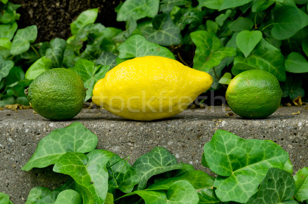 Surowy szary kamień tle cytryny Zdjęcia stock © szabiphotography