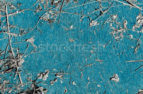 Eski açık mavi parçalar kurutulmuş bitkiler Stok fotoğraf © szabiphotography