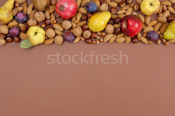 Sonbahar meyve fındık kahverengi bo organik Stok fotoğraf © szabiphotography